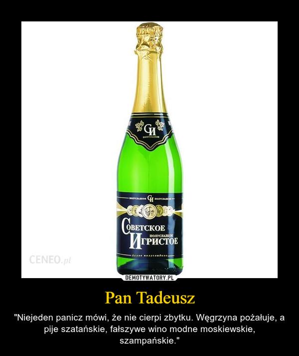 """Pan Tadeusz – """"Niejeden panicz mówi, że nie cierpi zbytku. Węgrzyna pożałuje, a pije szatańskie, fałszywe wino modne moskiewskie, szampańskie."""""""