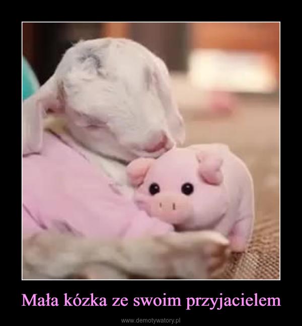 Mała kózka ze swoim przyjacielem –