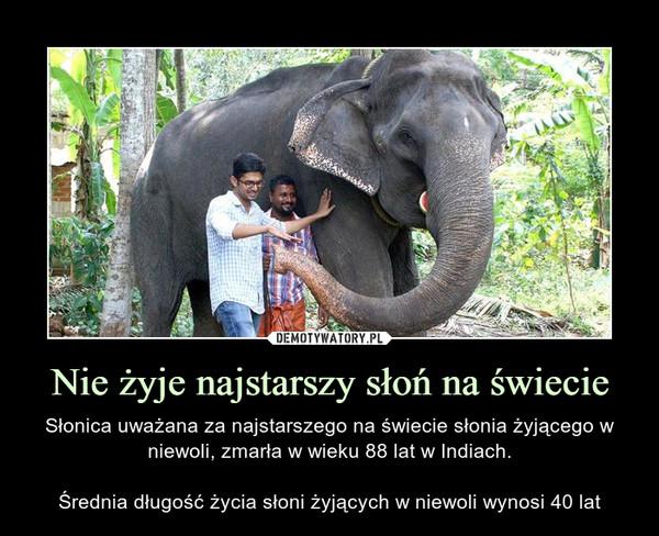 Nie żyje najstarszy słoń na świecie – Słonica uważana za najstarszego na świecie słonia żyjącego w niewoli, zmarła w wieku 88 lat w Indiach.Średnia długość życia słoni żyjących w niewoli wynosi 40 lat