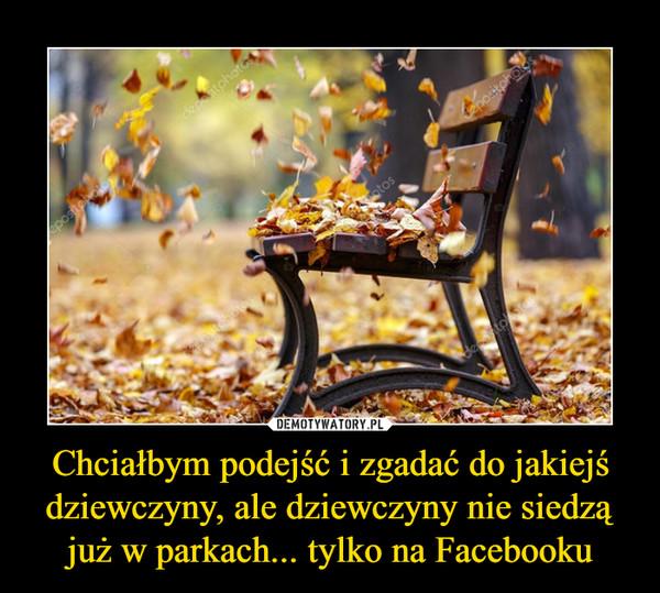 Chciałbym podejść i zgadać do jakiejś dziewczyny, ale dziewczyny nie siedzą już w parkach... tylko na Facebooku –