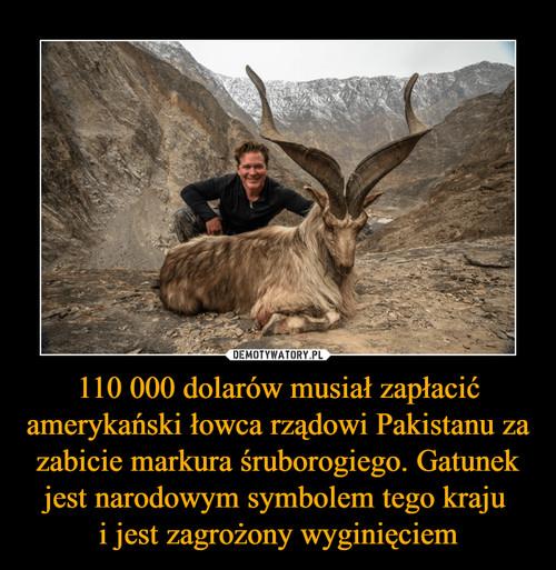 110 000 dolarów musiał zapłacić amerykański łowca rządowi Pakistanu za zabicie markura śruborogiego. Gatunek jest narodowym symbolem tego kraju  i jest zagrożony wyginięciem
