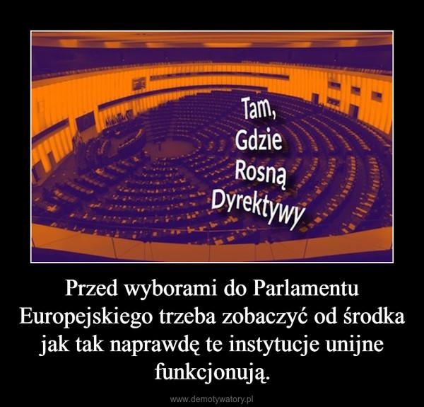 Przed wyborami do Parlamentu Europejskiego trzeba zobaczyć od środka jak tak naprawdę te instytucje unijne funkcjonują. –