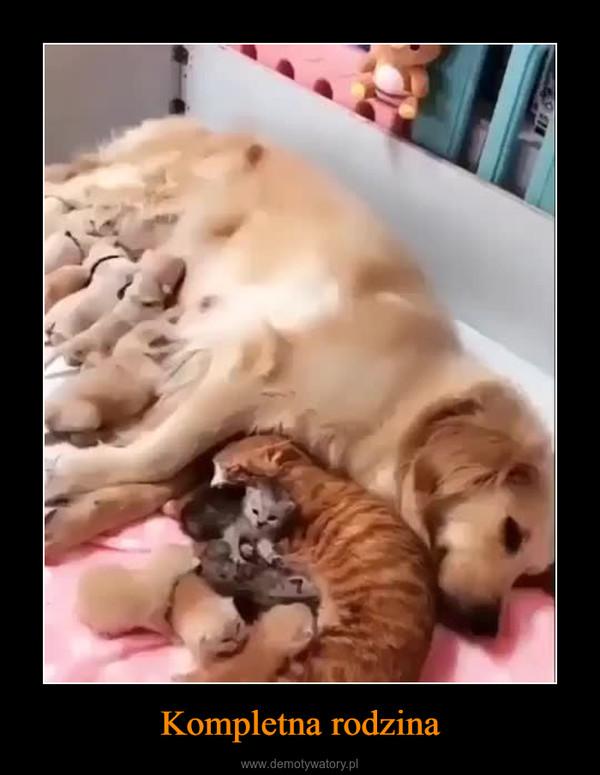 Kompletna rodzina –