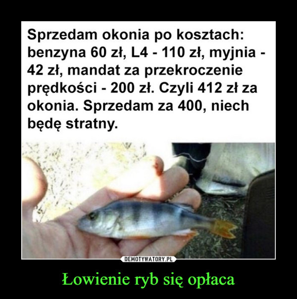 Łowienie ryb się opłaca –  Sprzedam okonia po kosztach: benzyna 60 zł, L4 - 110 zł, myjnia -42 zł, mandat za przekroczenie prędkości - 200 zł. Czyli 412 zł za okonia. Sprzedam za 400, niech będę stratny.