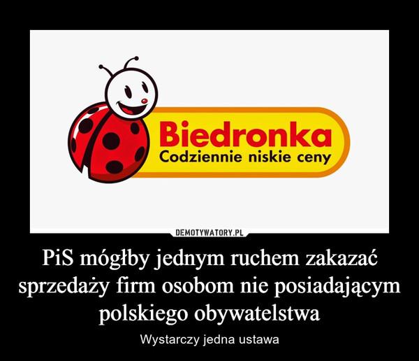 PiS mógłby jednym ruchem zakazać sprzedaży firm osobom nie posiadającym polskiego obywatelstwa – Wystarczy jedna ustawa