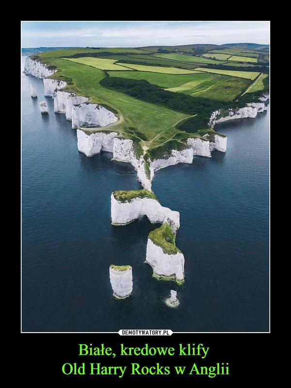 Białe, kredowe klify Old Harry Rocks w Anglii –