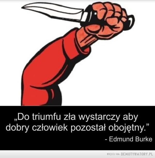 """Zawsze pamiętaj, że: –  Do triumfu zła wystarczy abydobry człowiek pozostał obojętny.""""- Edmund Burke"""