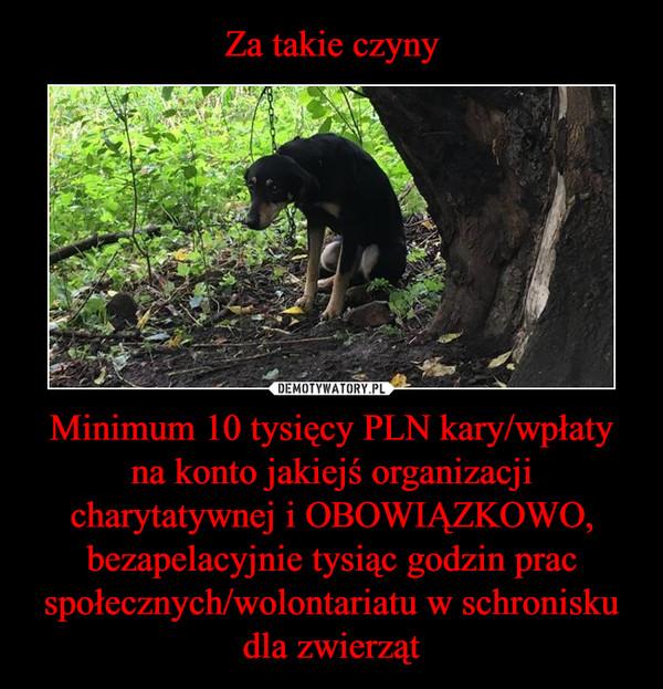Minimum 10 tysięcy PLN kary/wpłaty na konto jakiejś organizacji charytatywnej i OBOWIĄZKOWO, bezapelacyjnie tysiąc godzin prac społecznych/wolontariatu w schronisku dla zwierząt –