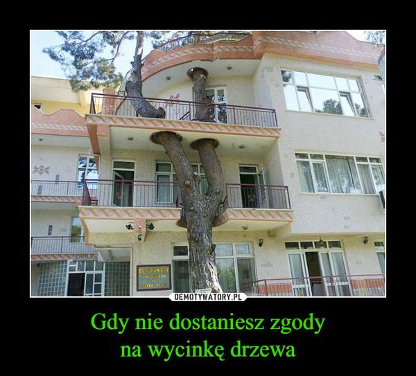 Gdy nie dostaniesz zgodyna wycinkę drzewa –