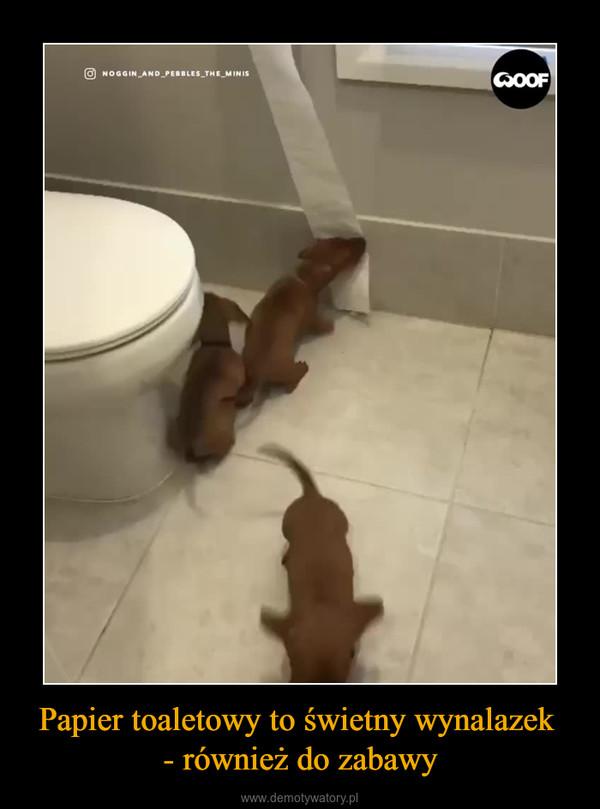 Papier toaletowy to świetny wynalazek - również do zabawy –