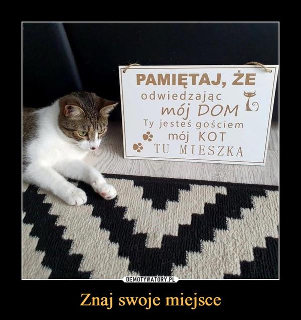 Znaj swoje miejsce –  Pamiętaj, że odwiedzając mój dom ty jesteś gościem mój kot tu mieszka