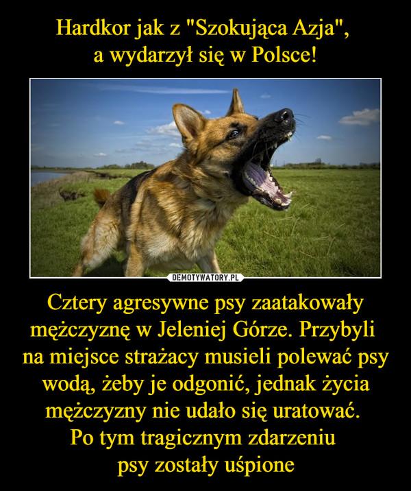 Cztery agresywne psy zaatakowały mężczyznę w Jeleniej Górze. Przybyli na miejsce strażacy musieli polewać psy wodą, żeby je odgonić, jednak życia mężczyzny nie udało się uratować. Po tym tragicznym zdarzeniu psy zostały uśpione –