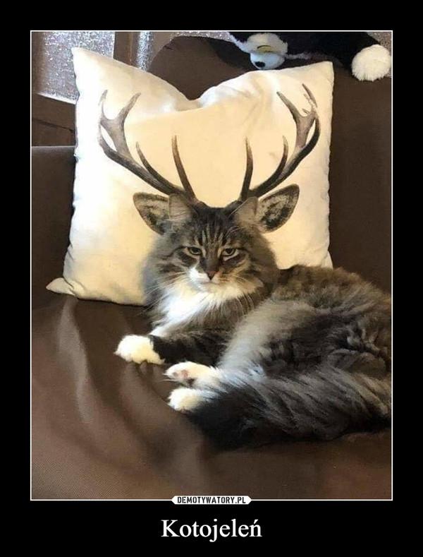 Kotojeleń –