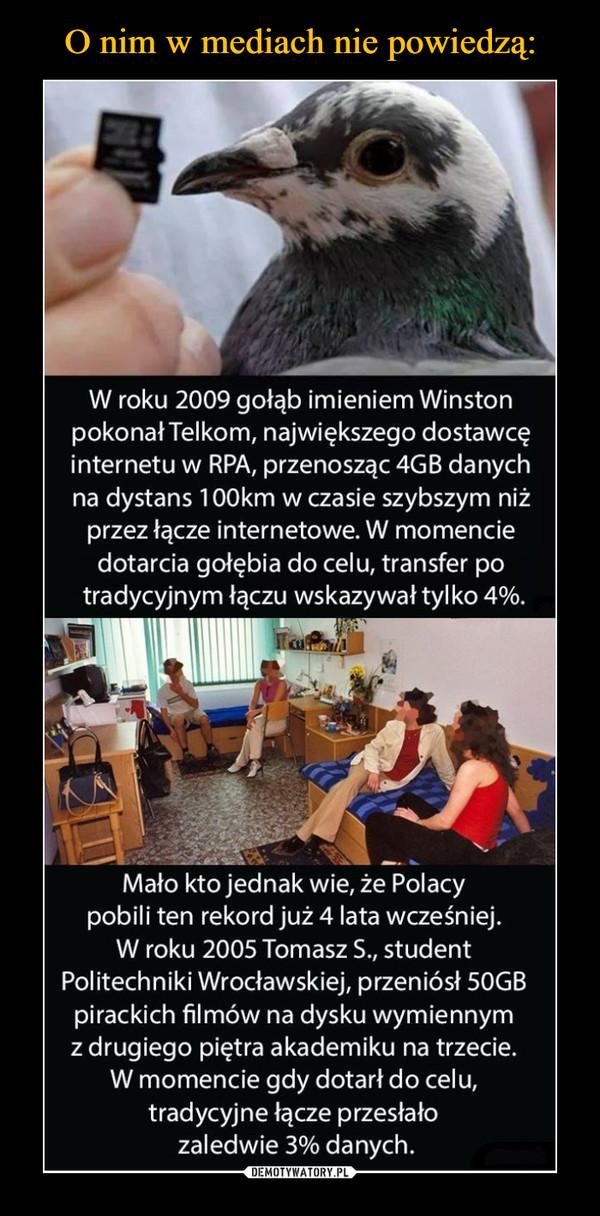 –  W roku 2009 gołąb imieniem Winston pokonał Telkom, największego dostawcę internetu w RPA, przenosząc 4GB danych na dystans 100km w czasie szybszym niż przez łącze internetowe. W momencie dotarcia gołębia do celu, transfer po tradycyjnym łączu wskazywał tylko 4%. Mało kto jednak wie, że Polacy pobili ten rekord już 4 lata wcześniej. W roku 2005 Tomasz S., student Politechniki Wrocławskiej, przeniósł 50GB pirackich filmów na dysku wymiennym z drugiego piętra akademiku na trzecie. W momencie gdy dotarł do celu, tradycyjne łącze przesłało zaledwie 3% danych.