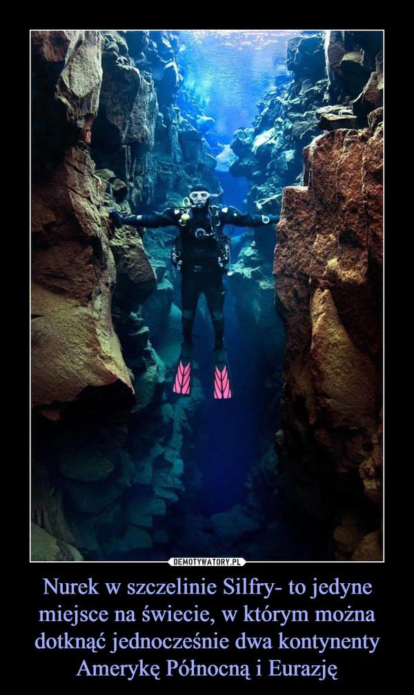Nurek w szczelinie Silfry- to jedyne miejsce na świecie, w którym można dotknąć jednocześnie dwa kontynenty Amerykę Północną i Eurazję –