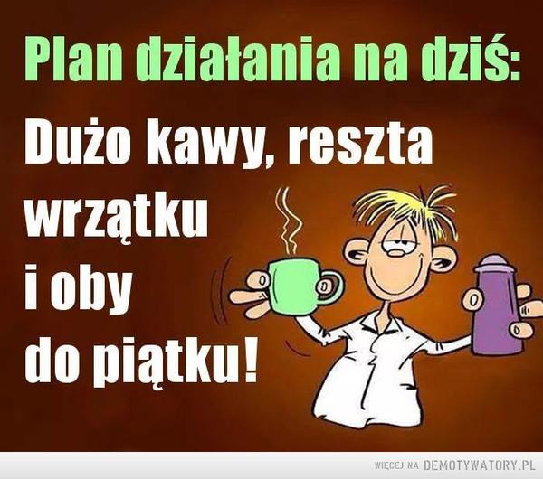 Plan działania –  Plan działania na dziś: Dużo kawy, reszta wrzątku i oby do piątku!