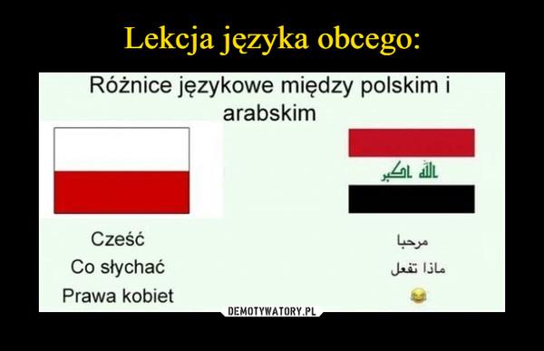 –  Różnice językowe między polskim i arabskim Cześć Co słychać Prawa kobiet