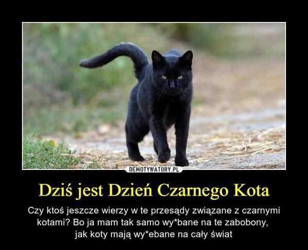 Dziś jest Dzień Czarnego Kota – Czy ktoś jeszcze wierzy w te przesądy związane z czarnymi kotami? Bo ja mam tak samo wy*bane na te zabobony, jak koty mają wy*ebane na cały świat