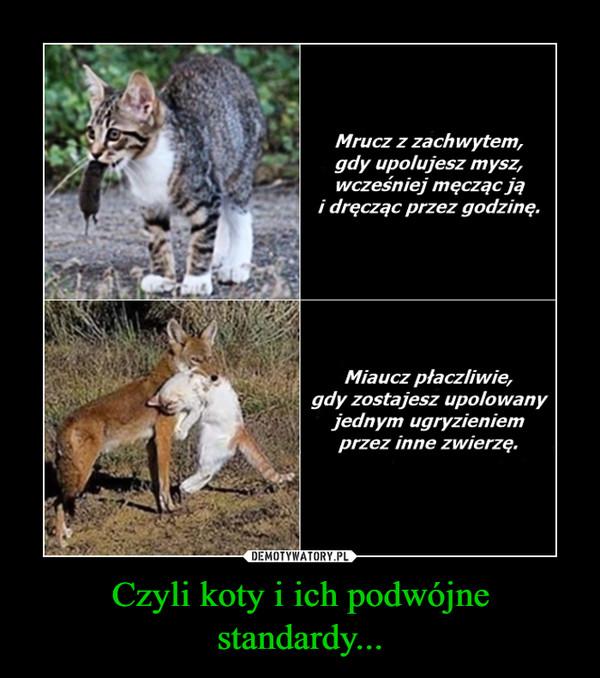 Czyli koty i ich podwójne standardy... –