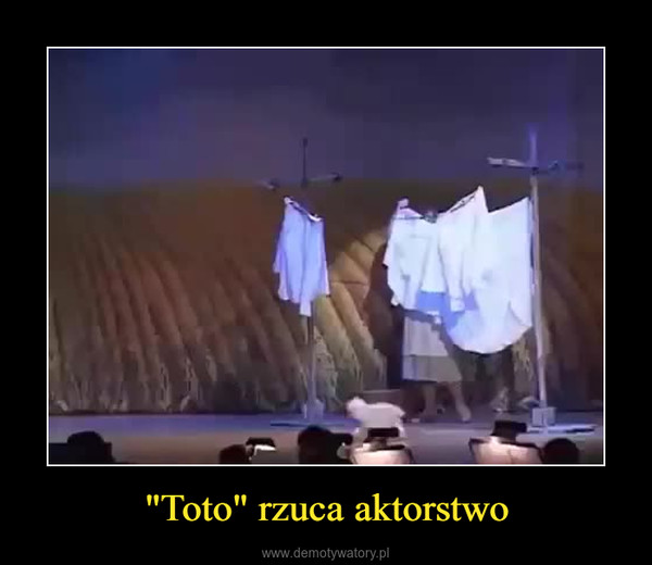 """Toto"" rzuca aktorstwo –"