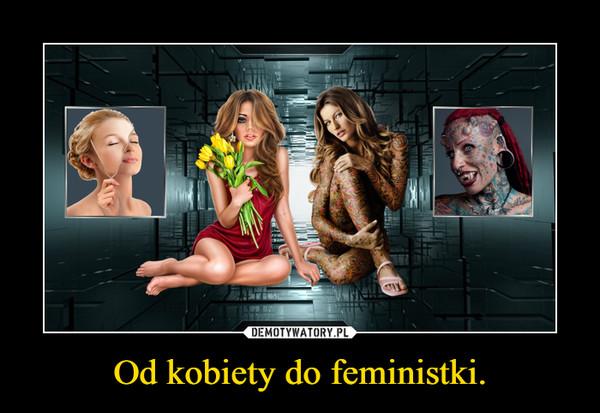 Od kobiety do feministki. –