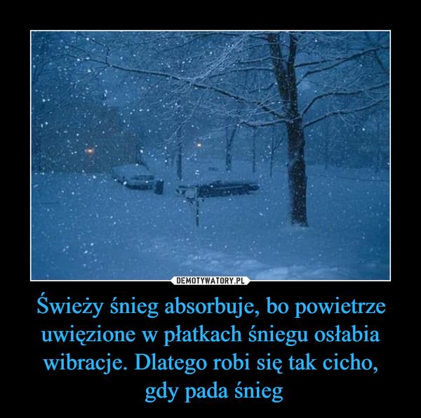 Świeży śnieg absorbuje, bo powietrze uwięzione w płatkach śniegu osłabia wibracje. Dlatego robi się tak cicho, gdy pada śnieg –