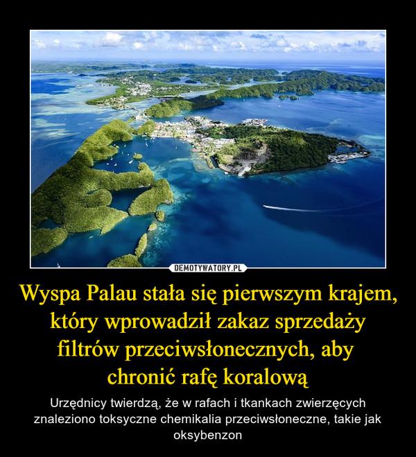 Wyspa Palau stała się pierwszym krajem, który wprowadził zakaz sprzedaży filtrów przeciwsłonecznych, aby chronić rafę koralową – Urzędnicy twierdzą, że w rafach i tkankach zwierzęcych znaleziono toksyczne chemikalia przeciwsłoneczne, takie jak oksybenzon