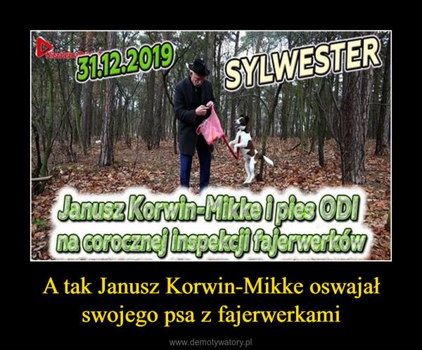 A tak Janusz Korwin-Mikke oswajał swojego psa z fajerwerkami –