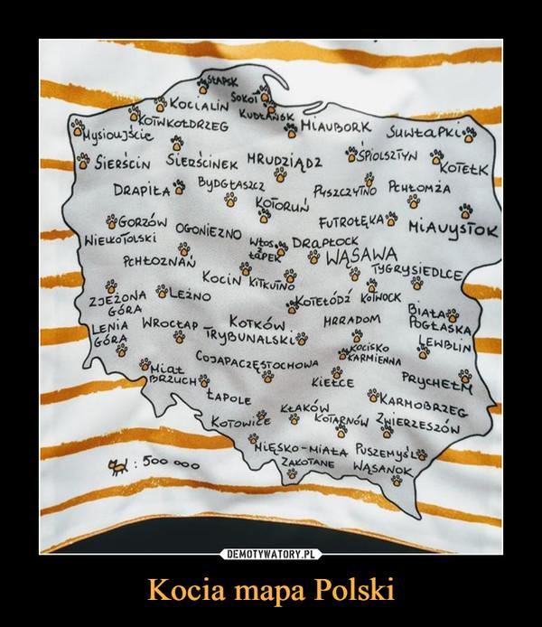 Kocia mapa Polski –