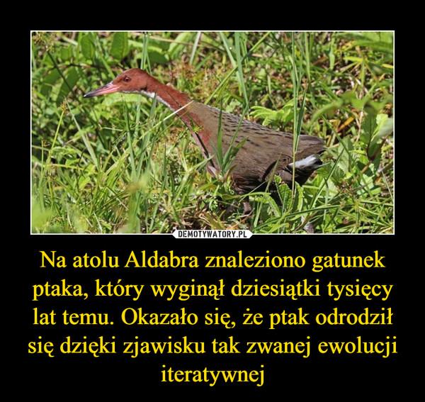 Na atolu Aldabra znaleziono gatunek ptaka, który wyginął dziesiątki tysięcy lat temu. Okazało się, że ptak odrodził się dzięki zjawisku tak zwanej ewolucji iteratywnej –