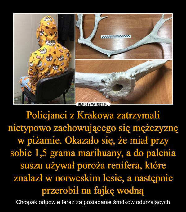 Policjanci z Krakowa zatrzymali nietypowo zachowującego się mężczyznę w piżamie. Okazało się, że miał przy sobie 1,5 grama marihuany, a do palenia suszu używał poroża renifera, które znalazł w norweskim lesie, a następnie przerobił na fajkę wodną – Chłopak odpowie teraz za posiadanie środków odurzających