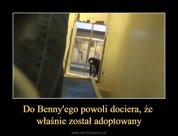 Do Benny'ego powoli dociera, że właśnie został adoptowany –