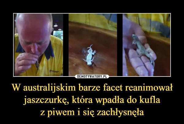 W australijskim barze facet reanimował jaszczurkę, która wpadła do kuflaz piwem i się zachłysnęła –