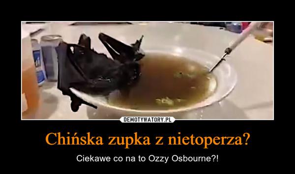 Chińska zupka z nietoperza? – Ciekawe co na to Ozzy Osbourne?!
