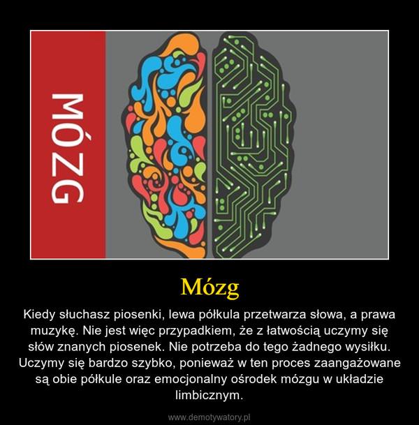 Mózg – Kiedy słuchasz piosenki, lewa półkula przetwarza słowa, a prawa muzykę. Nie jest więc przypadkiem, że z łatwością uczymy się słów znanych piosenek. Nie potrzeba do tego żadnego wysiłku. Uczymy się bardzo szybko, ponieważ w ten proces zaangażowane są obie półkule oraz emocjonalny ośrodek mózgu w układzie limbicznym.