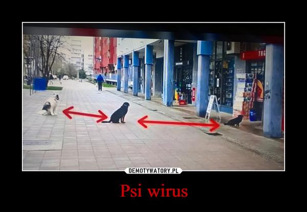 Psi wirus –