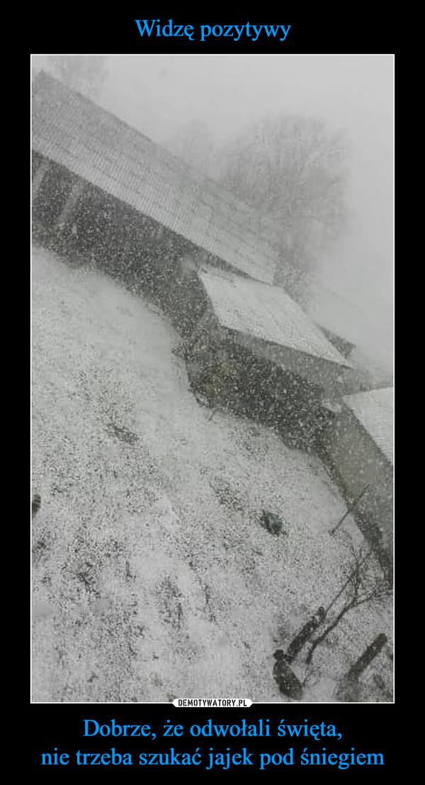Dobrze, że odwołali święta,nie trzeba szukać jajek pod śniegiem –