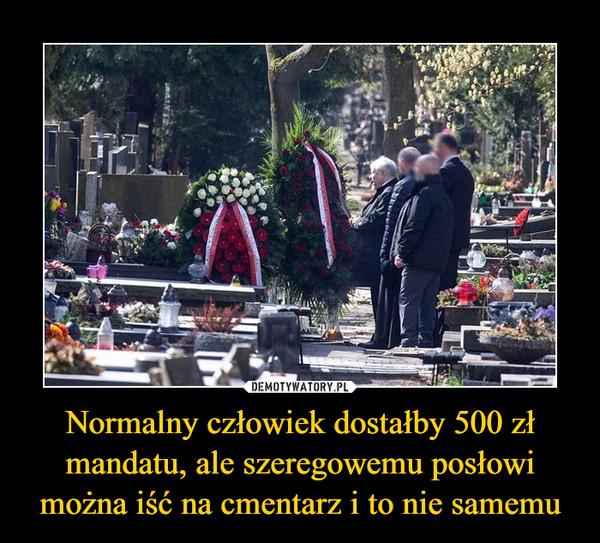 Normalny człowiek dostałby 500 zł mandatu, ale szeregowemu posłowi można iść na cmentarz i to nie samemu –