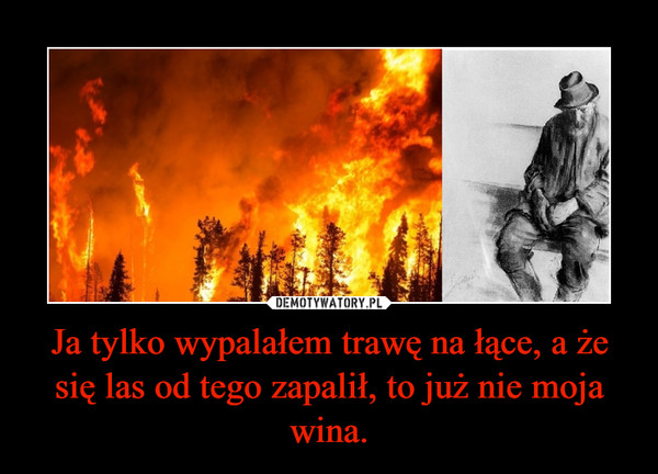 Ja tylko wypalałem trawę na łące, a że się las od tego zapalił, to już nie moja wina. –