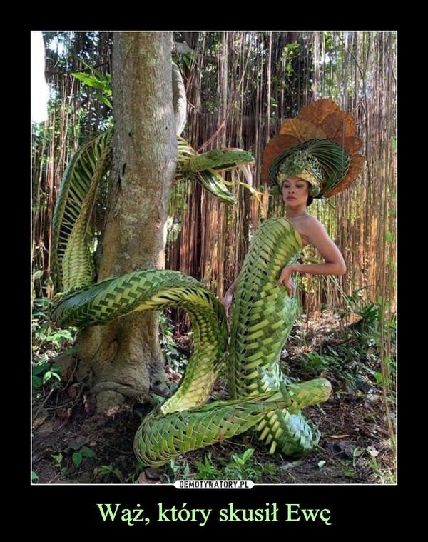 Wąż, który skusił Ewę –