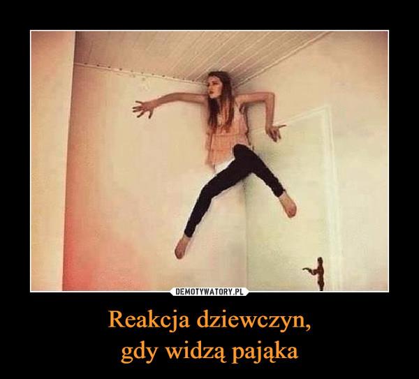 Reakcja dziewczyn,gdy widzą pająka –