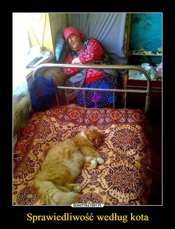 Sprawiedliwość według kota –