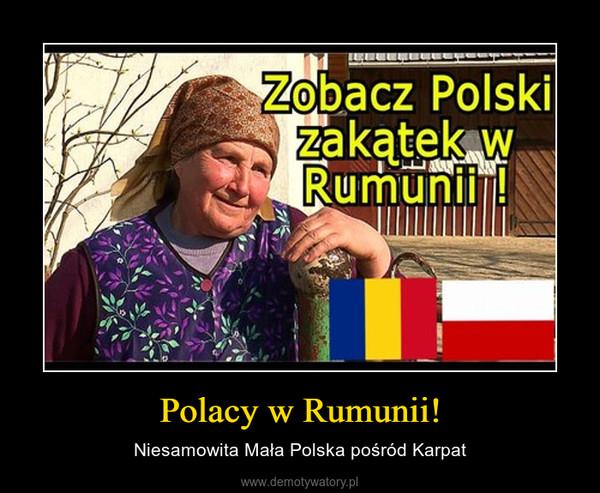 Polacy w Rumunii! – Niesamowita Mała Polska pośród Karpat