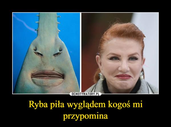 Ryba piła wyglądem kogoś mi przypomina –