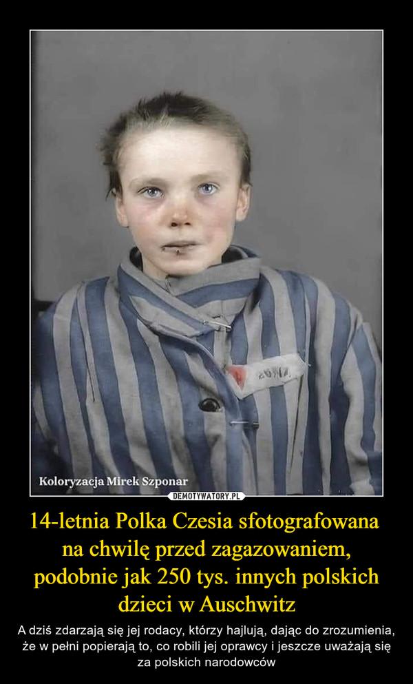 14-letnia Polka Czesia sfotografowana na chwilę przed zagazowaniem, podobnie jak 250 tys. innych polskich dzieci w Auschwitz – A dziś zdarzają się jej rodacy, którzy hajlują, dając do zrozumienia, że w pełni popierają to, co robili jej oprawcy i jeszcze uważają się za polskich narodowców