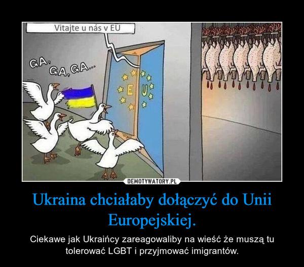 Ukraina chciałaby dołączyć do Unii Europejskiej. – Ciekawe jak Ukraińcy zareagowaliby na wieść że muszą tu tolerować LGBT i przyjmować imigrantów.