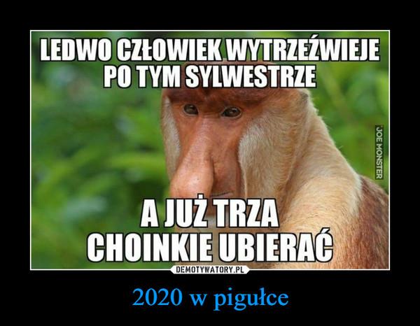 2020 w pigułce –  LEDWO CZŁOWIEK WYTRZEŹWIEJEPO TYM SYLWESTRZEA JUŻ TRZACHOINKIE UBIERAĆ