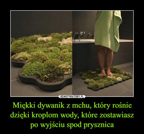 Miękki dywanik z mchu, który rośnie dzięki kroplom wody, które zostawiasz po wyjściu spod prysznica –