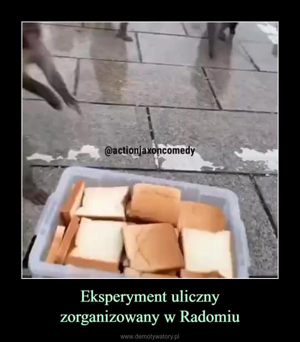 Eksperyment ulicznyzorganizowany w Radomiu –