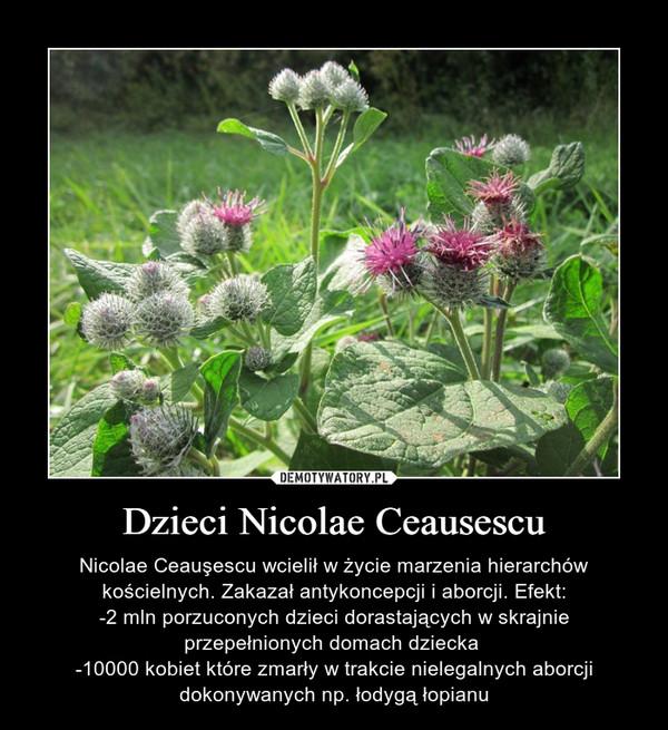 Dzieci Nicolae Ceausescu – Nicolae Ceauşescu wcielił w życie marzenia hierarchów kościelnych. Zakazał antykoncepcji i aborcji. Efekt:-2 mln porzuconych dzieci dorastających w skrajnie przepełnionych domach dziecka -10000 kobiet które zmarły w trakcie nielegalnych aborcji dokonywanych np. łodygą łopianu